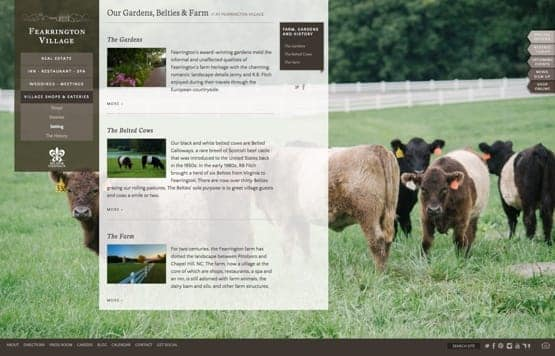 Descriptive page about the gardens and cows from the Fearrington Village website